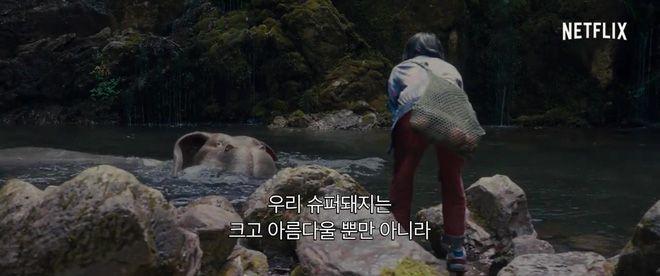 Bom tấn Okja tung trailer mới, hé lộ tạo hình của quái vật siêu đáng yêu (2)